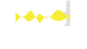 logo_spalsh-12